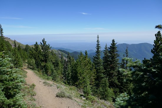 Quilcene, WA: Looking north from along the trail going down.