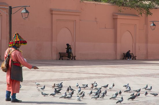 Medina of Marrakesh walking tour