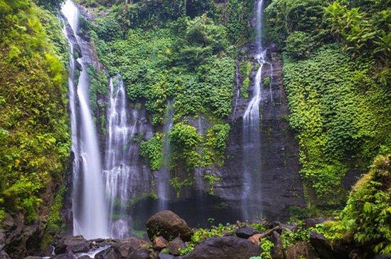 Tour del Paquete Cosmo Bali: Delfín...