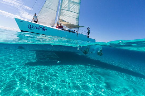 Coral Cats Day Sail