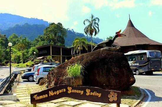 Tour del Sarawak Gunung Gading