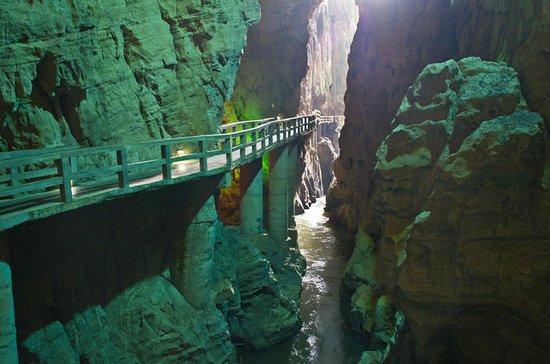 Excursión a la cueva del bosque de...