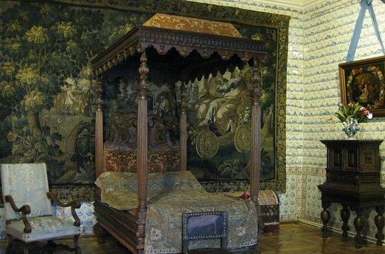 Museum Toegangspas Menshhikov Palace ...