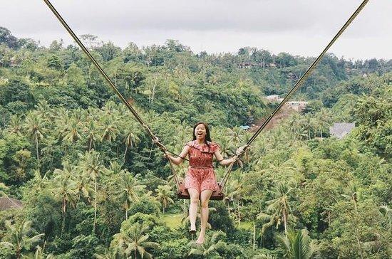 Bali Swing Ubud et les excursions...