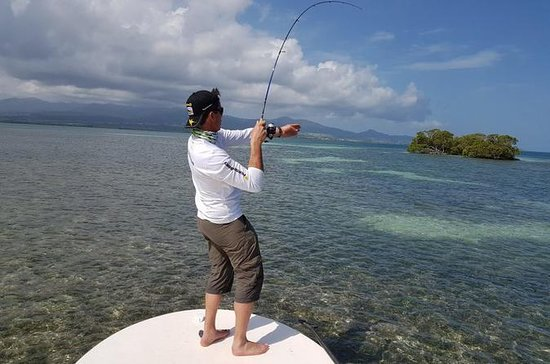 Mangrove Sport Fishing