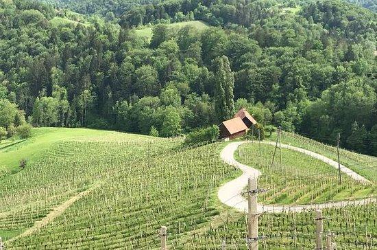 passeio a pé e vinho na Eslovênia