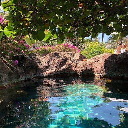 Un resort familiar excelente en Bali