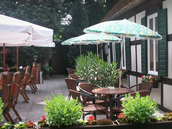 Teterow, ألمانيا: Sommerterrasse im Wald