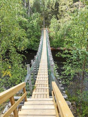 Kuusamo, Finlândia: Kanjonin Kurkkaus Trail
