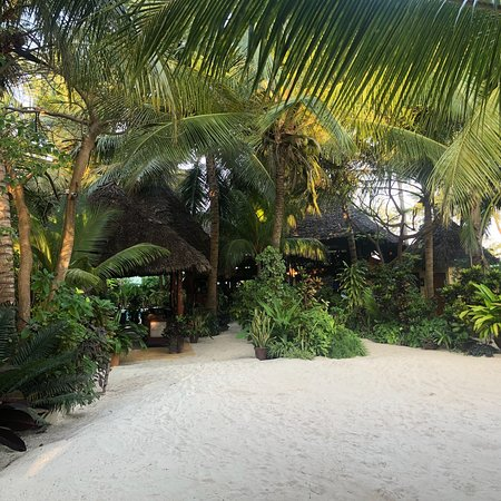 Seles Beach Bar and Restaurant Picture