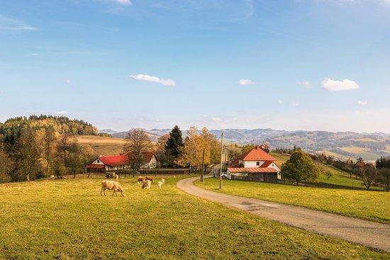 Vsetin, Republik Ceko: Hostinec U Holáňů s rozhlednou a ubytováním