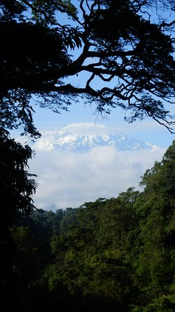 Africa Safari Experts Day Tours: Kilimanjaro
