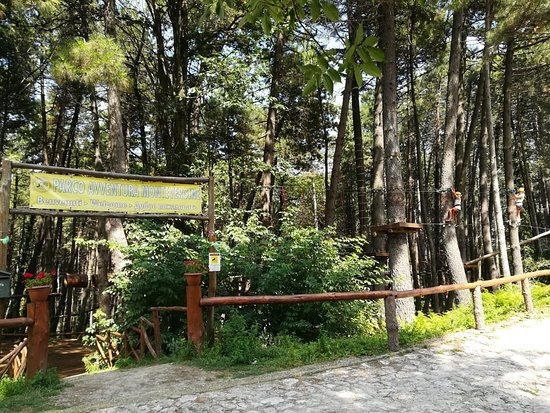 Parco Avventura Montevergine: IMG-20180823-WA0029_large.jpg