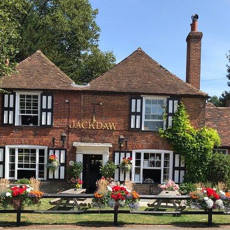 Denton, UK: The Jackdaw in bloom
