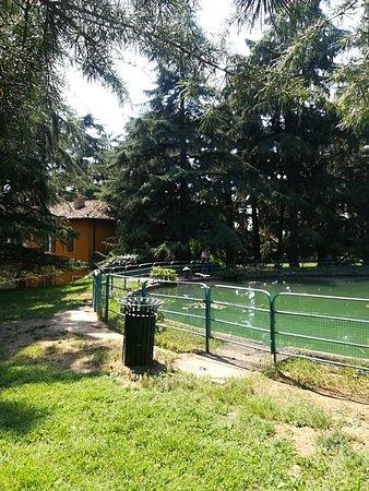 Hotel delle Terme: IMG_20180819_122131_large.jpg