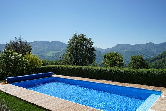 Ternberg, النمسا: Panoramapool