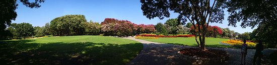 Dallas Arboretum & Botanical Gardens: IMG_20180820_114202_large.jpg