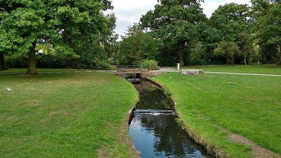 Tudor Grange Park: IMG_20180823_121317577_HDR_large.jpg