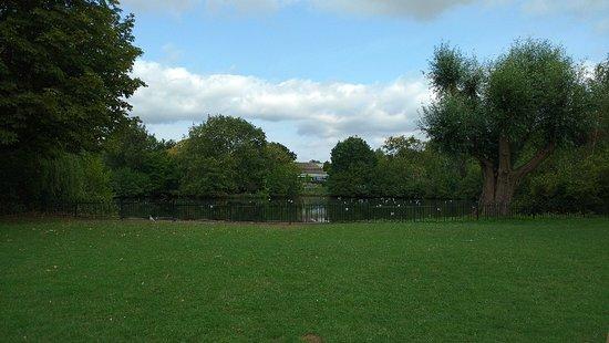 Tudor Grange Park: IMG_20180823_121154373_large.jpg