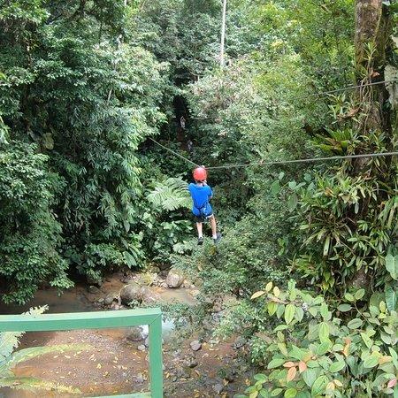 Canopy Safari: photo1.jpg