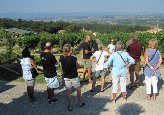 Enoteca Croce Di Febo Biologica: Learning about the soil and sun