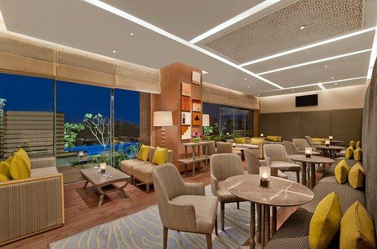 the leela ambience convention hotel delhi new delhi hotel