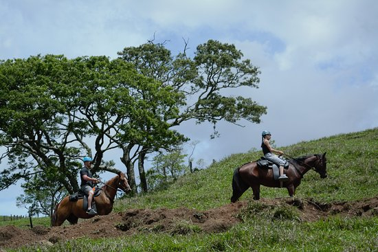 Tour de caballos, Monteverde Extremo Park