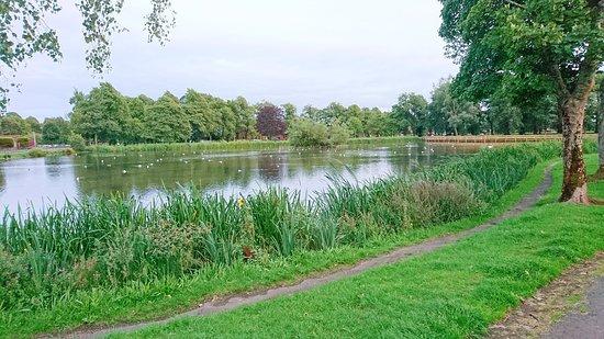 The Kay Park