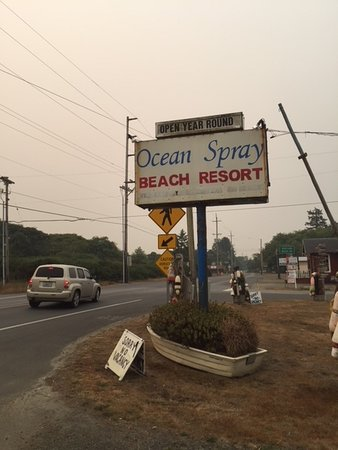 Grayland, WA: Can't see the beach