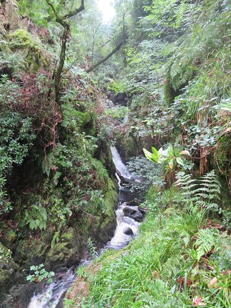 Stanley Ghyll Force Waterfall: Lovely Views