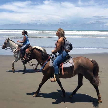 The Riding Adventure: What a great experience. A must do in Costa Rica!