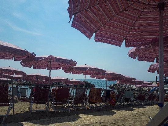 Bagno vittoria marina di pisa italien hotel anmeldelser sammenligning af priser - Bagno vittoria marina di pisa ...