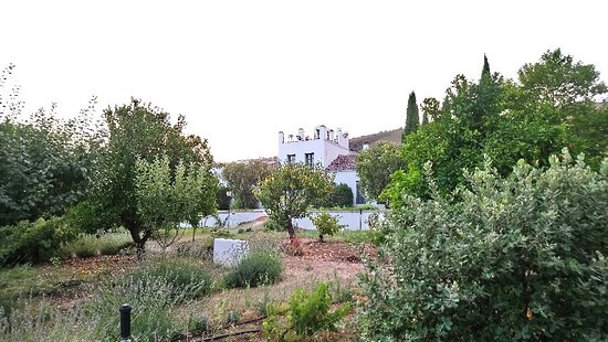 Hotel Molino del Arco: DSC_0369_large.jpg