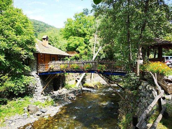 Aleksandrovac, Serbien: IMG-ae0d3c61aedc950fa083fd59d4588704-V_large.jpg