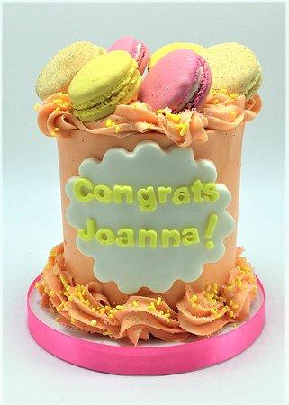 Flavor Cupcakery Colorful Macaron Cake Cheetah Themed Kids Birthday