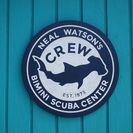 Neal Watson Bimini Scuba Center