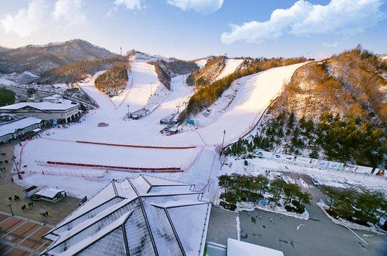 Elysian Ski Day Trip fra Seoul