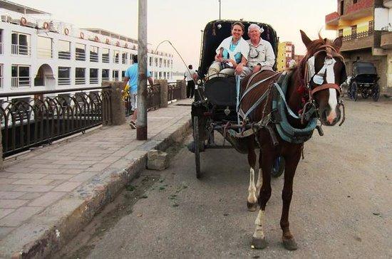 Stadtrundfahrt mit der Pferdekutsche