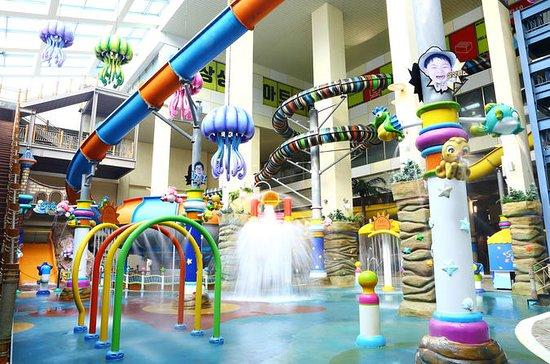 Woongjin Playdoci Multi-Leisure ...