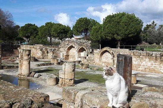 Ville antique de PAPHOS