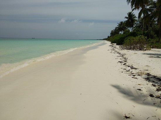 Gan Island: IMG_20180821_110405_large.jpg