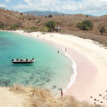 Pulau Komodo, Indonesia: photo4.jpg