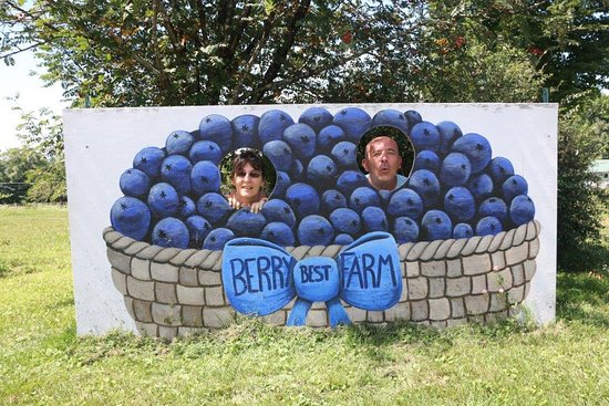 Berry Best Farm