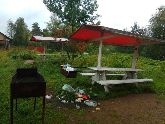 Losevo, Rusko: Вот такие предоставляют беседки с мангалом, мусор лежал как минимум 3 дня которые мы там были