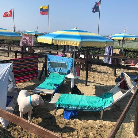 Spiaggia bild von bagno marechiaro viareggio tripadvisor - Bagno marechiaro viareggio ...