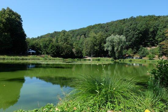 Enkenbach-Alsenborn, Tyskland: Schwarzweiher