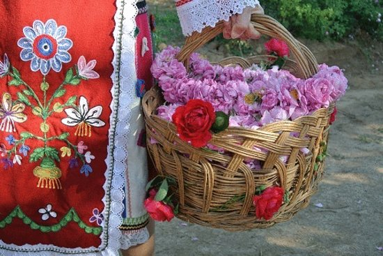 Ruse, Bułgaria: getlstd_property_photo