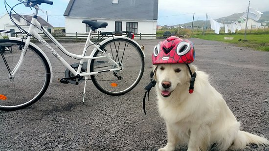 Achill Island, Ireland: Cindy's ready to go