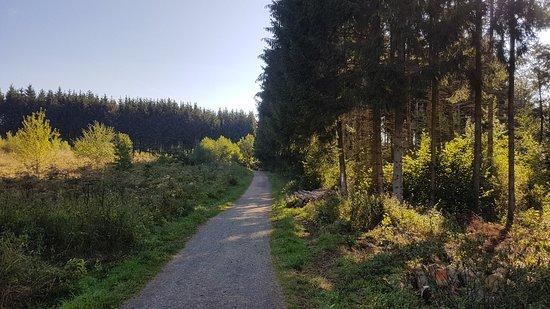 Kell am See, Deutschland: 20180819_093541_large.jpg