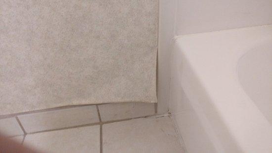 Quality Inn - Flagstaff / East Lucky Lane: peeling walls, mold